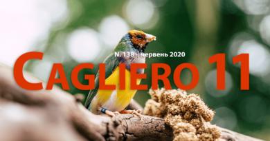 Кальєро-11 за червень
